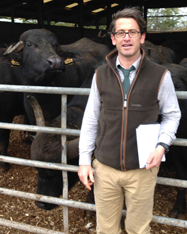 Ian Knight - Livestock Services