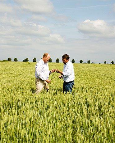 Farm Management Services