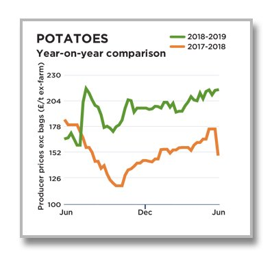 Potatoes July 2019