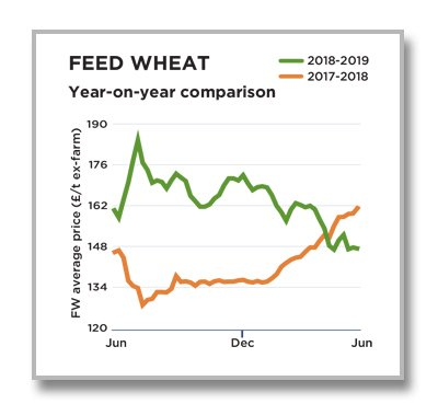 Feed Wheat July 2019